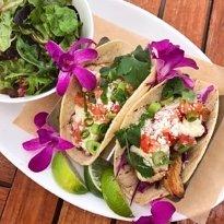 taco tuesday hawaiian style